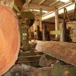 aserrio para madera